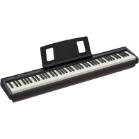Roland FP-10 $499.99